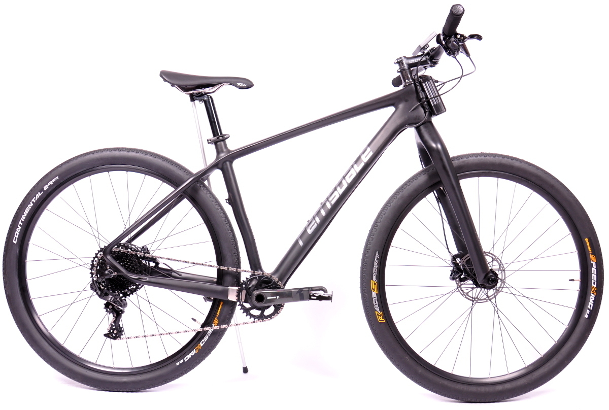remsdale_ebike_carbon_hardtail_2017.jpg