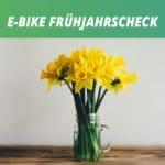 In 5 Schritten: Frühjahrs-Check am E-Bike