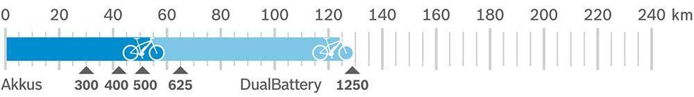 Bosch Cargo Speed Reichweite