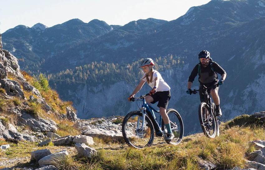 Verkaufszahlen des ZIV für Fahrräder in Deutschland 2020