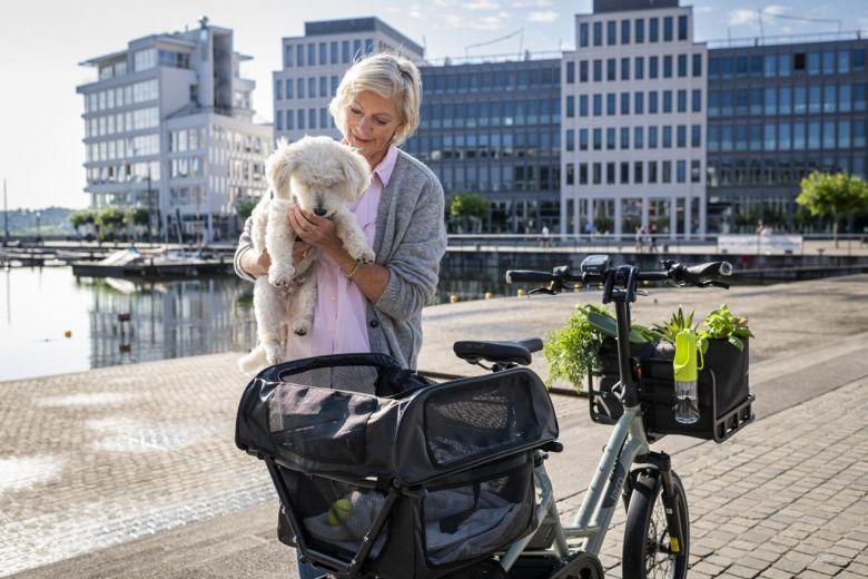TERN Doghouse Mini - Transportbox für Hunde